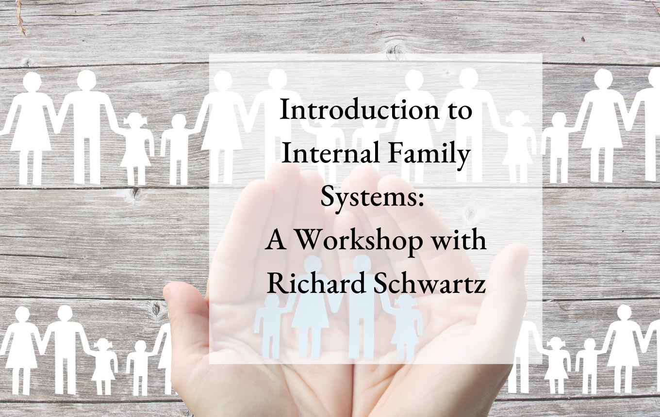 Introduction to Internal Family Systems