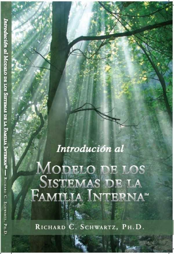 Intro book - Spanish Version